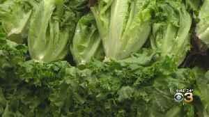 E.Coli Outbreak Linked to Romaine Lettuce Sickens Dozens Across Nation [Video]