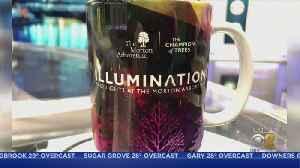 Ed's Mug Of The Week: Illumination At Morton Arboretum [Video]