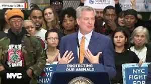 NYC Mayor Bill de Blasio Signs Foie Gras Ban And Other Animal Rights Legislation Into Law [Video]