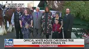 Christmas tree arrives at the White House [Video]