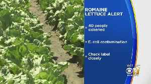 Romaine Lettuce From Central California Recalled Due To E.Coli Contamination [Video]