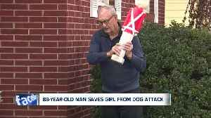 News video: Korean War veteran, 88, uses Christmas decoration to fend off pitbull that was attacking girl