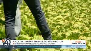 Washington resident infected with E. coli connected to outbreak in romaine lettuce [Video]