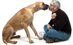 That's Ruff! Man Killed By Being Licked By His Dog [Video]