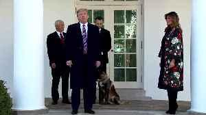 U.S. hero dog 'Conan' honored at the White House [Video]