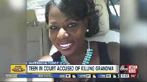 Police: St. Petersburg woman stabbed to death by her 13-year-old grandson [Video]