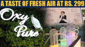 As Delhi chokes, an 'oxygen bar' shows us what real fresh air feels like | OneIndia News [Video]