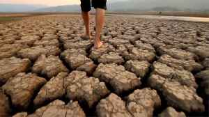 UN Report: Only Drastic Action Will Avert Consequences of Climate Change [Video]