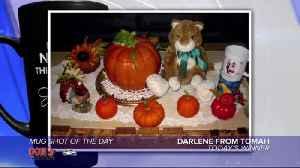Mug shot of the day - 11/26/19 - Darlene from Tomah [Video]