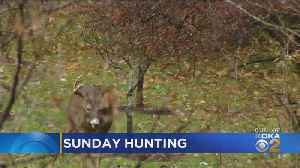 Sunday Hunting Legislation Signed Into Pennsylvania Law [Video]