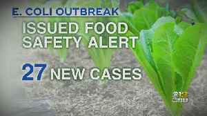Concern Over People Eating E.Coli- Contaminated Romaine Lettuce Grow [Video]