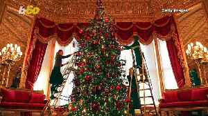 Queen of Christmas! Windsor Castle Has Been Decorated for the Holidays [Video]