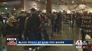 Shoppers line up early for Black Friday deals [Video]