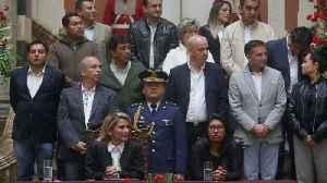 Bolivia's Interim Government Appoints Temporary U.S. Ambassador [Video]