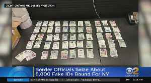 Border Officials Seize Fake IDs Bound For NY [Video]