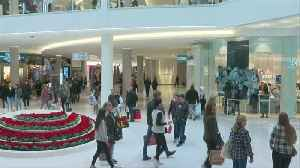 Holiday Shopping Begins: Thousands Crowd MOA For Black Friday [Video]