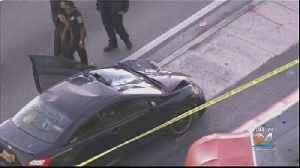 Pedestrian Struck, Killed In Miami Gardens [Video]
