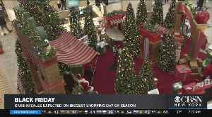 News video: Shoppers Hit The Stores For Black Friday Deals