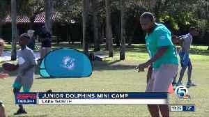Junior Dolphins Mini Camp [Video]