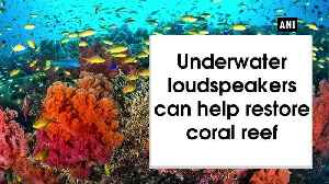 Underwater loudspeakers can help restore coral reef | OneIndia News [Video]