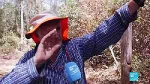 Australia activists argue bushfires are linked to climate change [Video]