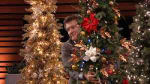News video: Robert Herjavec Breaks a Christmas Tree