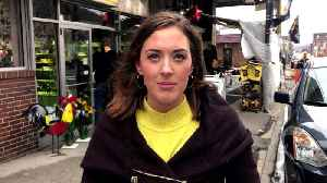 Reporter Update: Lindsay Ward - Steelers Win [Video]