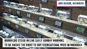 Crowds of people line up for first day of legal marijuana sales in Michigan [Video]