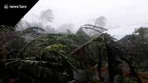 News video: Village damaged by Typhoon Kammuri in The Philippines