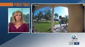 News video: VIDEO: Porch pirate foiled by Amazon driver, police say