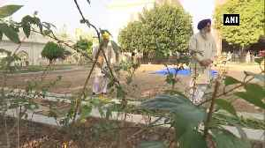 News video: SGPC recreates Guru Ka Bagh in Amritsar near Golden Temple