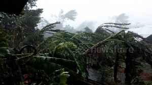 News video: Village damaged by Typhoon Kammuri in The Philippines