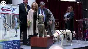 News video: WEB EXTRA: Sully The Service Dog Statue
