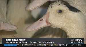 Foie Gras Fight: Ban On Duck Dish Could Cost Update NY Farmers Jobs [Video]