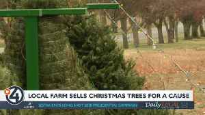 Local farm sells Christmas trees for a cause [Video]