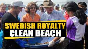 Swedish royalty helps clean beach: India can learn from Sweden's waste management | OneIndia News [Video]