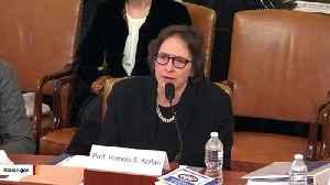 Impeachment Witness Pamela Karlan Quotes Brett Kavanaugh During Hearing [Video]