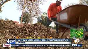 Mast Park keeps natural roots with modern makeover [Video]