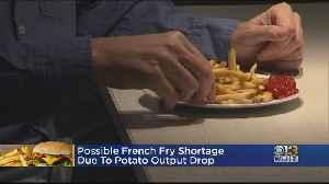 Possible French Fry Shortage Due To Poor Potato Harvest [Video]