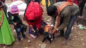 World's 'largest animal sacrifice' held at Hindu festival in Nepal [Video]