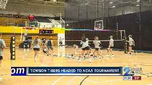 Towson Tigers Women's Volleyball headed to the NCAA Tournament [Video]