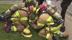 Firefighters Save Dog [Video]