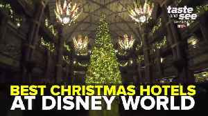 Best Christmas Hotels at Disney World | Taste and See Tampa Bay [Video]