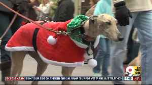 Top things to do in Cincinnati this weekend: Dec. 5-8 [Video]