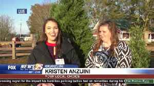 Picking the Perfect Christmas Tree: Kristen Anzuini Reports [Video]