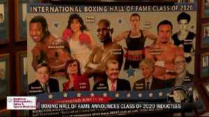 International Boxing Hall of Fame to induct first female boxers in 2020 [Video]