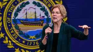 Elizabeth Warren And Pete Buttigieg Call Each Other Out [Video]