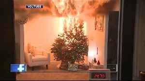 First responders warn of Christmas Tree fire danger [Video]