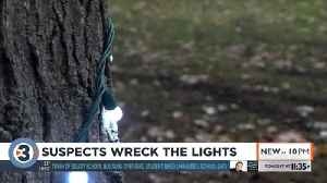 Vandals wreck Christmas lights display, cause $3,000 in damage [Video]