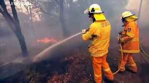 Only rain will put out Australia's raging bushfires, fire chiefs say [Video]